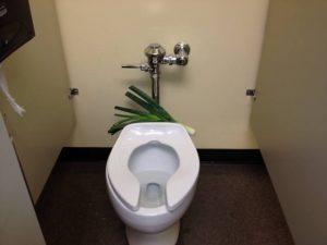 leak in bathroom